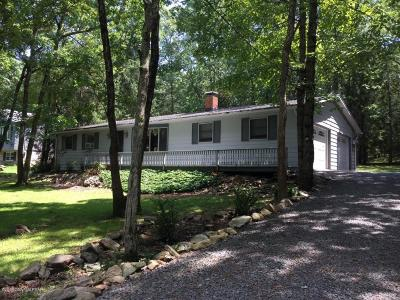 Jim Thorpe Single Family Home For Sale: 40 Indian Trail Dr
