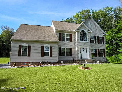 Blakeslee Single Family Home For Sale: 272 Scenic Dr