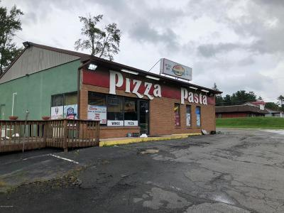 Blakeslee Commercial For Sale: 5278 Route 115