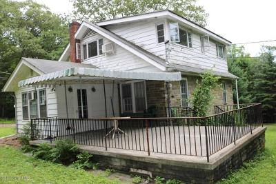 Mount Pocono Single Family Home For Sale: 310 Park Ave