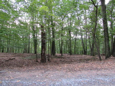East Stroudsburg Residential Lots & Land For Sale: 37 Hilltop Cir