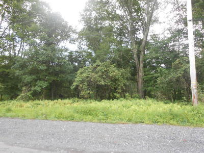 East Stroudsburg Commercial For Sale: 536 T 536