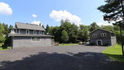 Monroe County Single Family Home For Sale: 596 Route 196