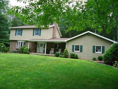 Jim Thorpe Single Family Home For Sale: 450 Bear Creek Lakes Dr
