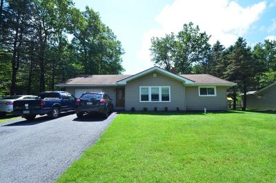Albrightsville Single Family Home For Sale: 96 Mountain Rd