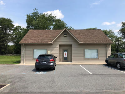 Brodheadsville Commercial For Sale: 107 Firehouse Ln