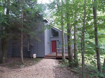 Lake Harmony Single Family Home For Sale: 157 Telemark