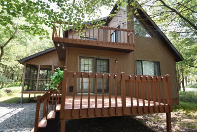 Blakeslee Single Family Home For Sale: 162 Schochs Mill Rd