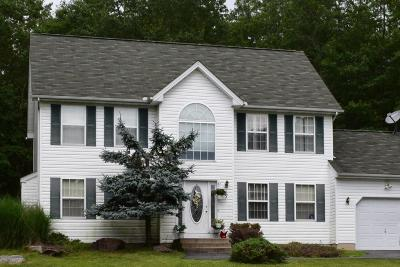 Albrightsville Single Family Home For Sale: 61 Chickadee Ln