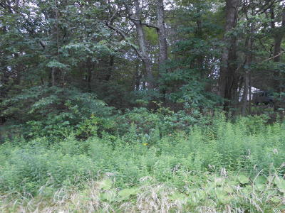 Mount Pocono Residential Lots & Land For Sale: Lot 46 Devonshire Ln