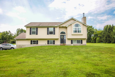 Kunkletown Single Family Home For Sale: 1095 Hideaway Hill Rd
