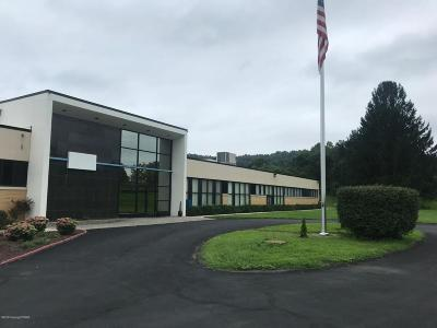 Monroe County Commercial For Sale: 136 Shelding Rd