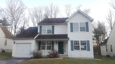 East Stroudsburg Single Family Home For Sale: 315 Witness Tree Ct