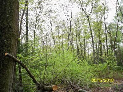 Stroudsburg Residential Lots & Land For Sale: Rinker T 488 1 Rd