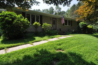 Jim Thorpe Single Family Home For Sale: 164 Indian Trl