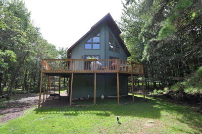 Towamensing Trails Single Family Home For Sale: 209 Wylie Cir