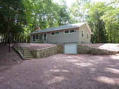 Lake Harmony Single Family Home For Sale: 217 S Lake Drive