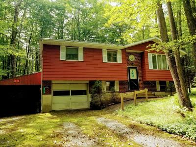 Pocono Lake Single Family Home For Sale: 3118 Ogontz Dr