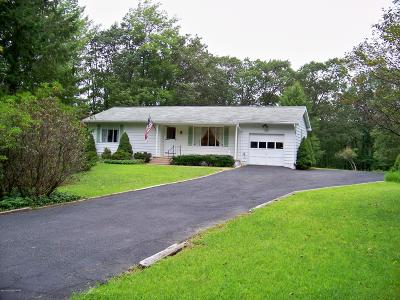 Mount Pocono Single Family Home For Sale: 22 Skyline Way