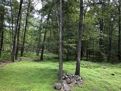East Stroudsburg Residential Lots & Land For Sale: 2 Lenape Dr