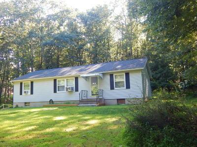 East Stroudsburg Single Family Home For Sale: 117 Chrisjan Dr