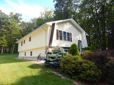 Mount Pocono Single Family Home For Sale: 88 Megargel Ln