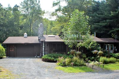 East Stroudsburg Single Family Home For Sale: 1085 Country Creek Ln