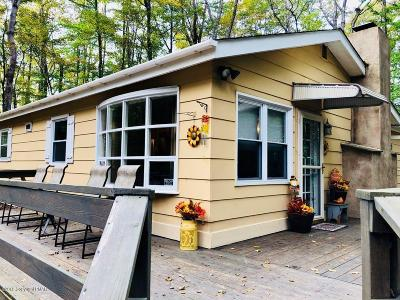 Pocono Lake Single Family Home For Sale: 117 Comanche Trl