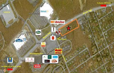 Mount Pocono Commercial For Sale: 89 Oak St