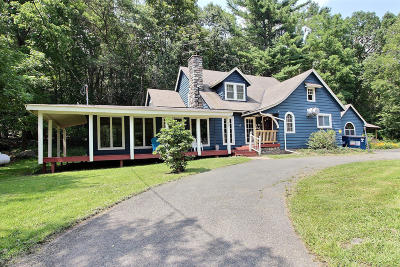 Canadensis Single Family Home For Sale: 2441 Route 390