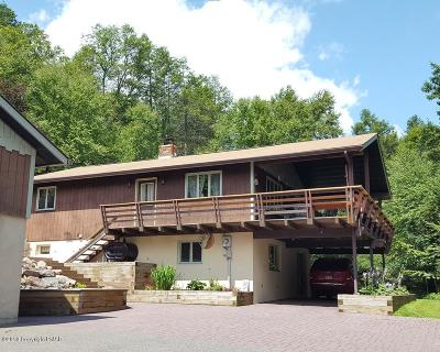 Palmerton Single Family Home For Sale: 3360 Stagecoach Rd