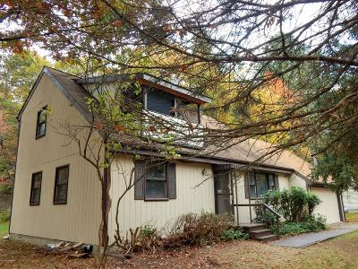 East Stroudsburg Rental For Rent: 1118 S Lake Of The Pines Blvd