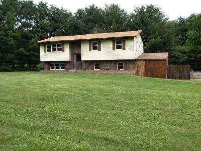 Kunkletown Single Family Home For Sale: 460 Twinflower Cir