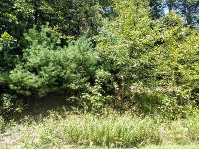 East Stroudsburg Residential Lots & Land For Sale: Lot 73 Lr 461 (Shawnee Valley Dr)