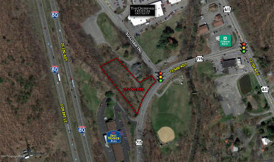 Tannersville Commercial For Sale: Route 715 & Sullivan Trail