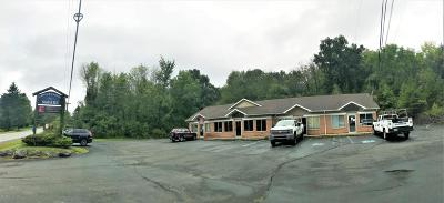 Stroudsburg Commercial For Sale: 6515 Route 209