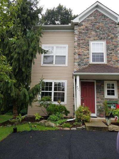 East Stroudsburg Single Family Home For Sale: 48A Lower Ridge Vw
