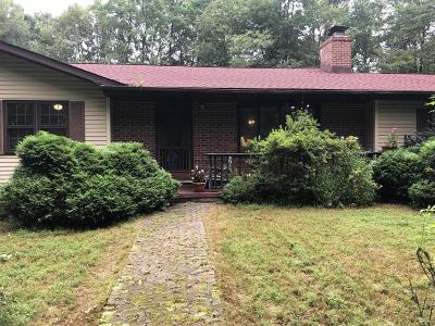 Stroudsburg Single Family Home For Sale: 219 Trail Ct