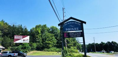 Stroudsburg Commercial For Sale: 6515 Us-209
