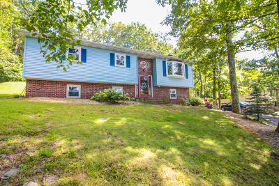 Tannersville Single Family Home For Sale: 184 Faber Cir