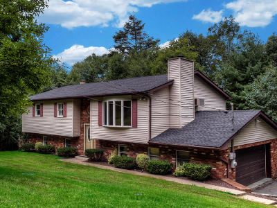 Tannersville Single Family Home For Sale: 169 Faber Cir