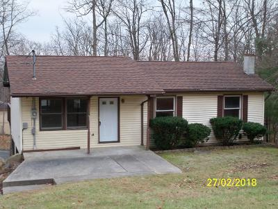 Mount Pocono Single Family Home For Sale: 91 Church Ave