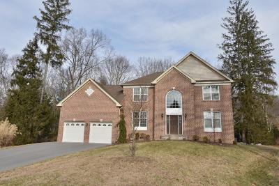East Stroudsburg Single Family Home For Sale: 534 Tournament Ct