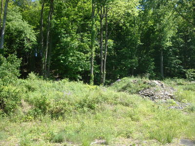Stroudsburg Residential Lots & Land For Sale: Cherry Valley Rd