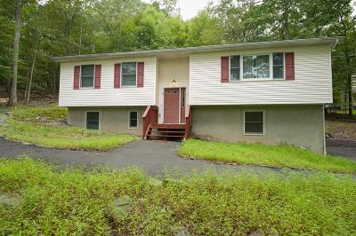 East Stroudsburg Single Family Home For Sale: 2146 Southport Dr