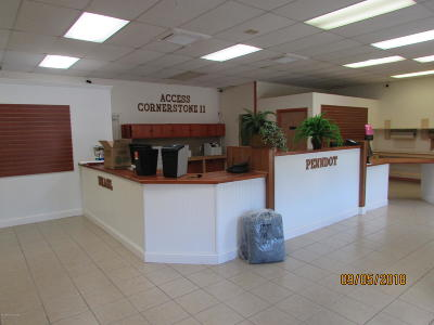 Pocono Summit Commercial For Sale: 109 Plaza Dr. (Unit 10)