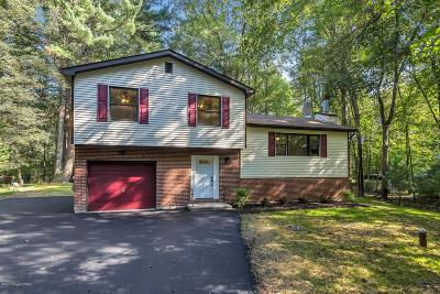 East Stroudsburg Single Family Home For Sale: 4175 Sky Pine Way