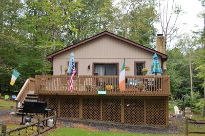 Pocono Lake Single Family Home For Sale: 104 Hopi Ct