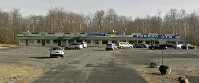 Tobyhanna Commercial For Sale: 970 Route 196