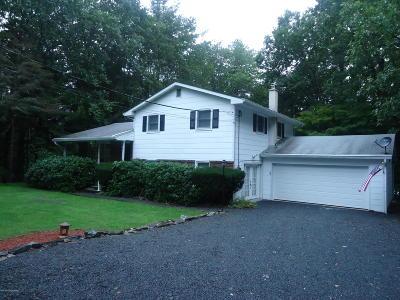 Jim Thorpe Single Family Home For Sale: 71 Bear Creek Lake Dr